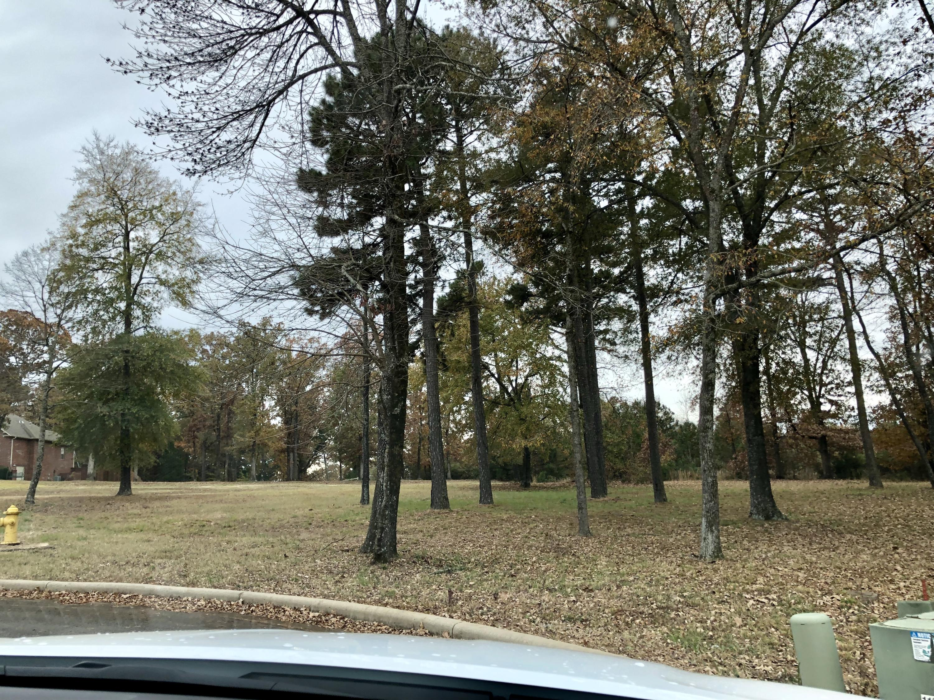 Large photo 5 of sold land at  Hilltop Summit Estates , Russellville, AR