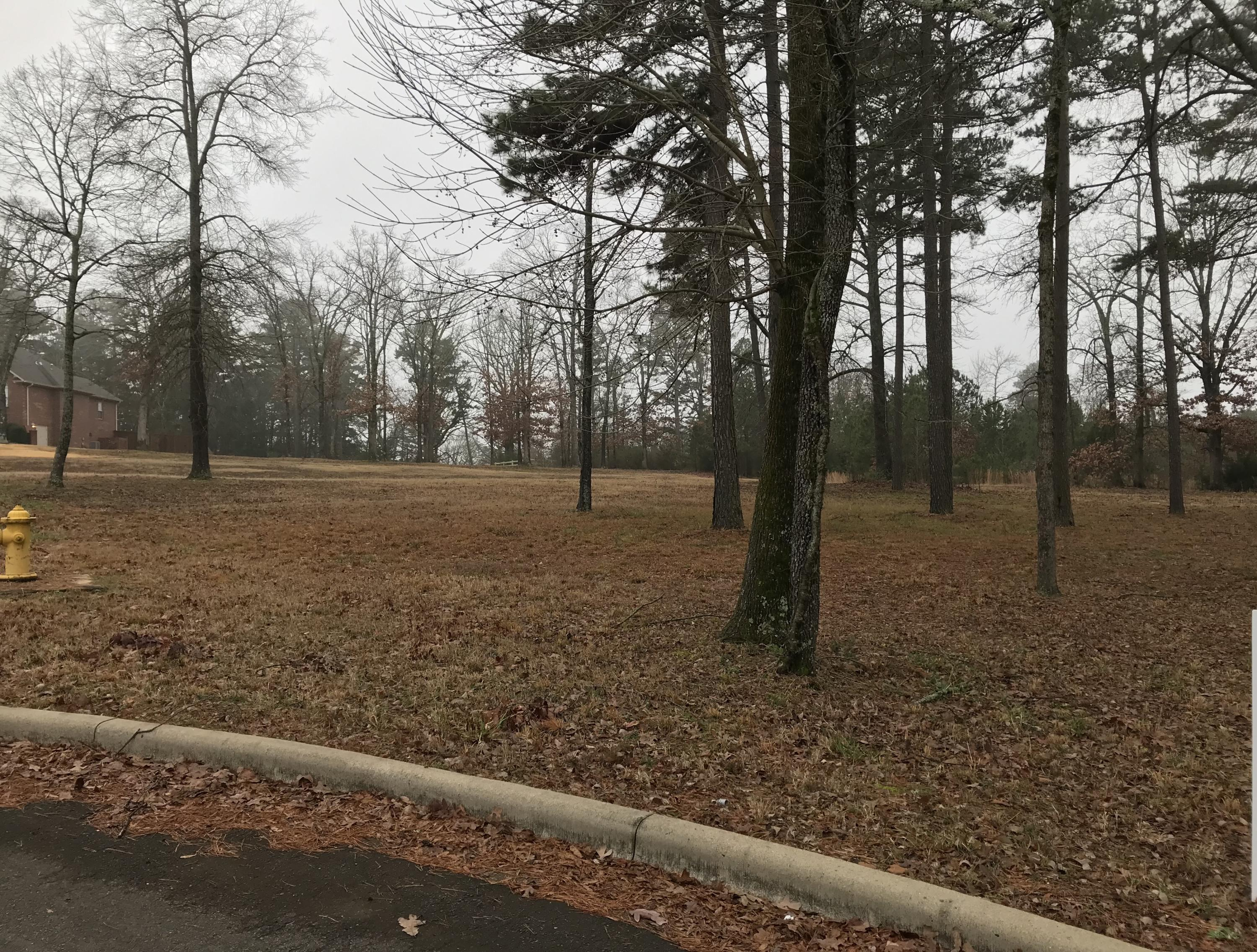Large photo 4 of sold land at  Hilltop Summit Estates , Russellville, AR
