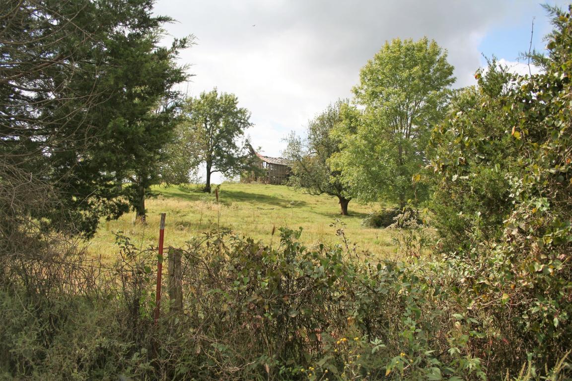 Large photo 1 of sold land in Belleville at  Rodeo Road, Belleville, AR