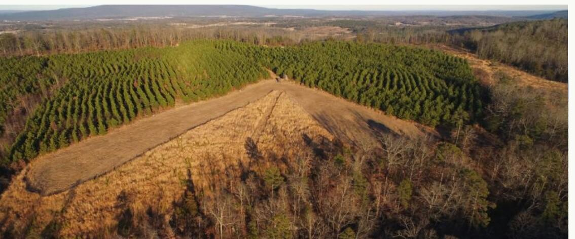 Large photo 1 of sold land at  Postal Road, Dover, AR