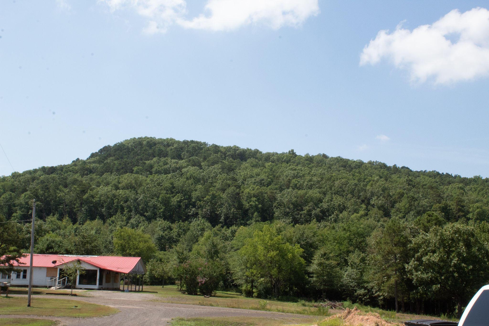 Large photo 2 of sold land at   , Atkins, AR