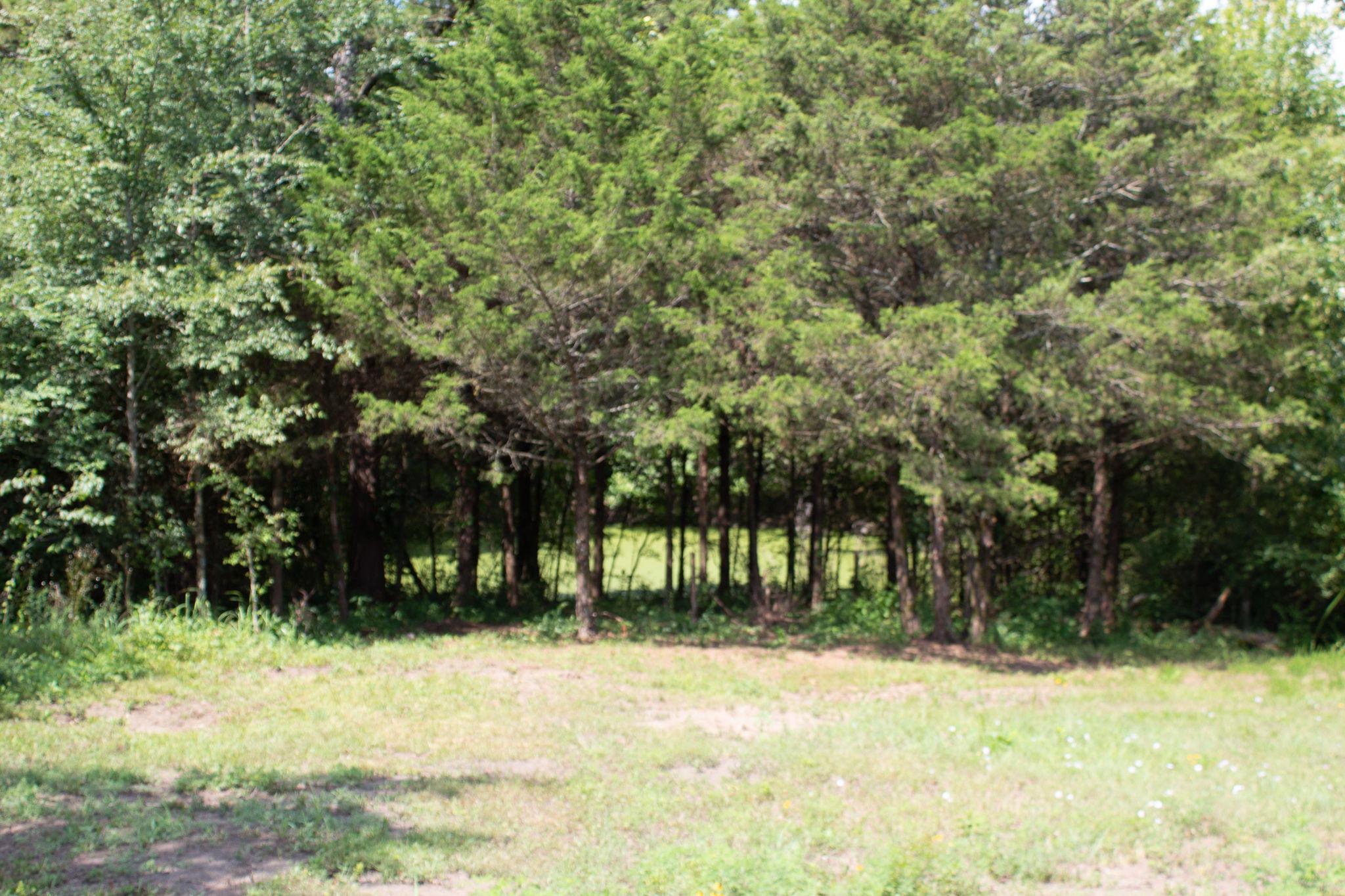 Large photo 6 of sold land at   , Atkins, AR