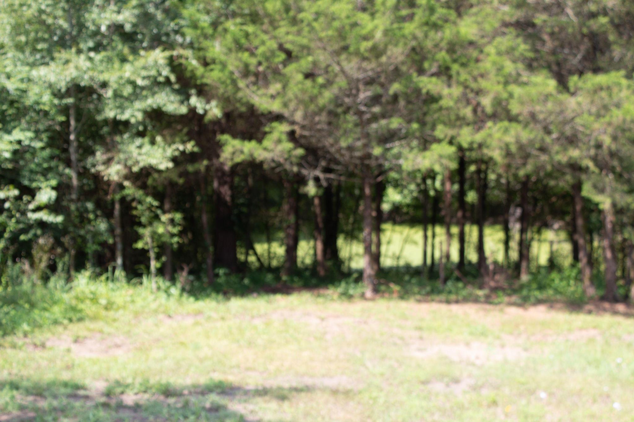 Large photo 7 of sold land at   , Atkins, AR