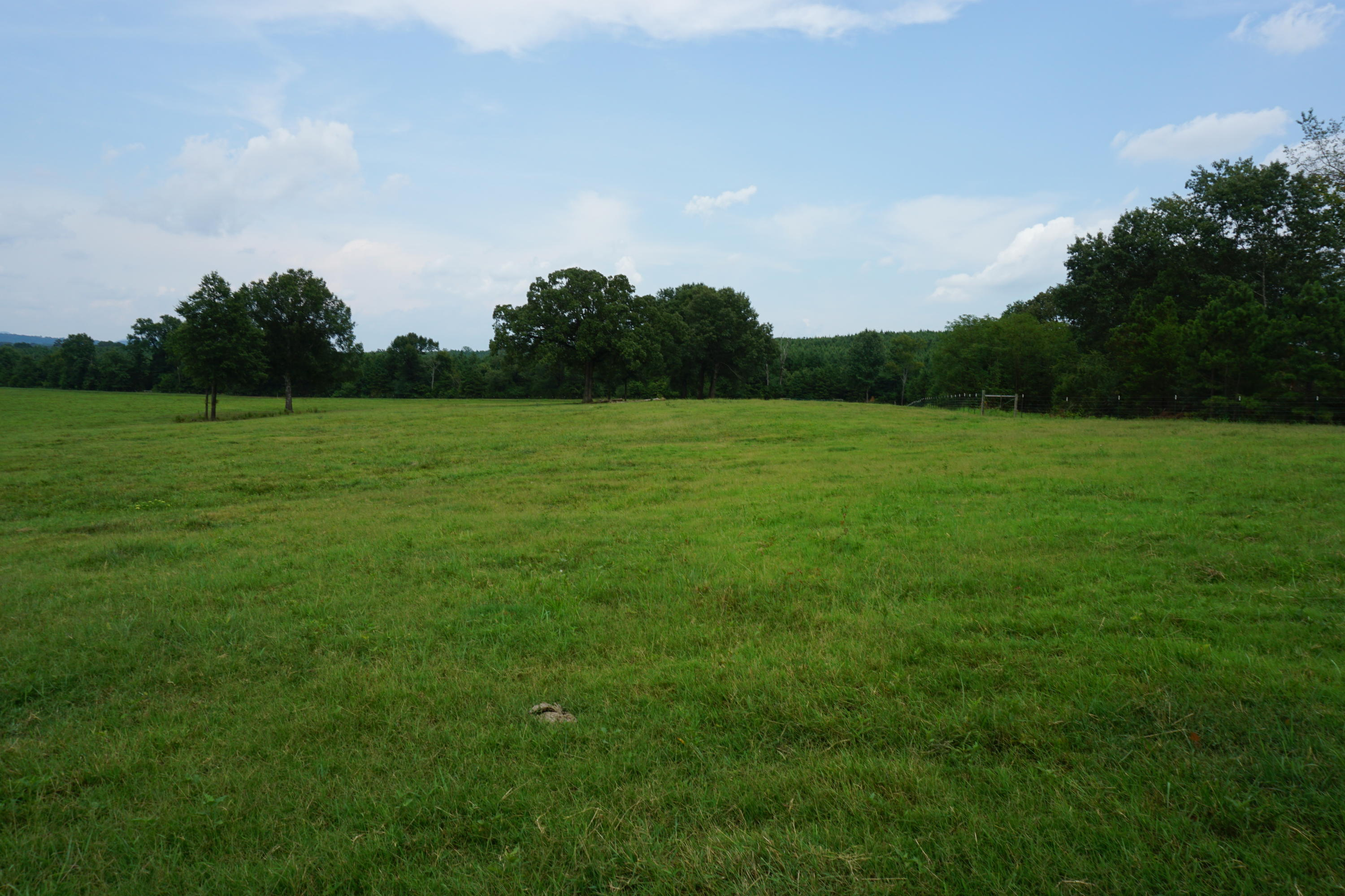 Large photo 2 of sold land at  Off of Oates Crossing Rd. , Belleville, AR