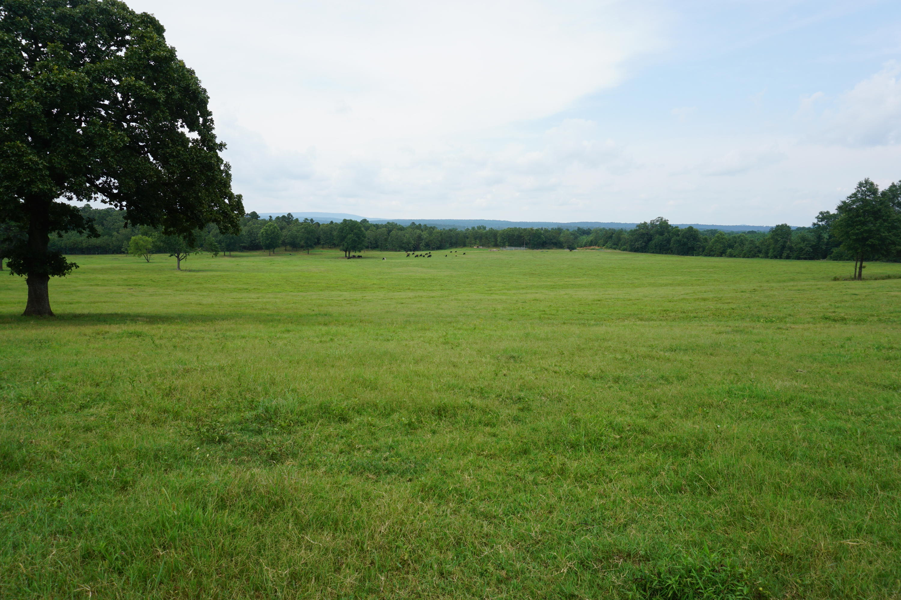 Large photo 1 of sold land at  Off of Oates Crossing Rd. , Belleville, AR