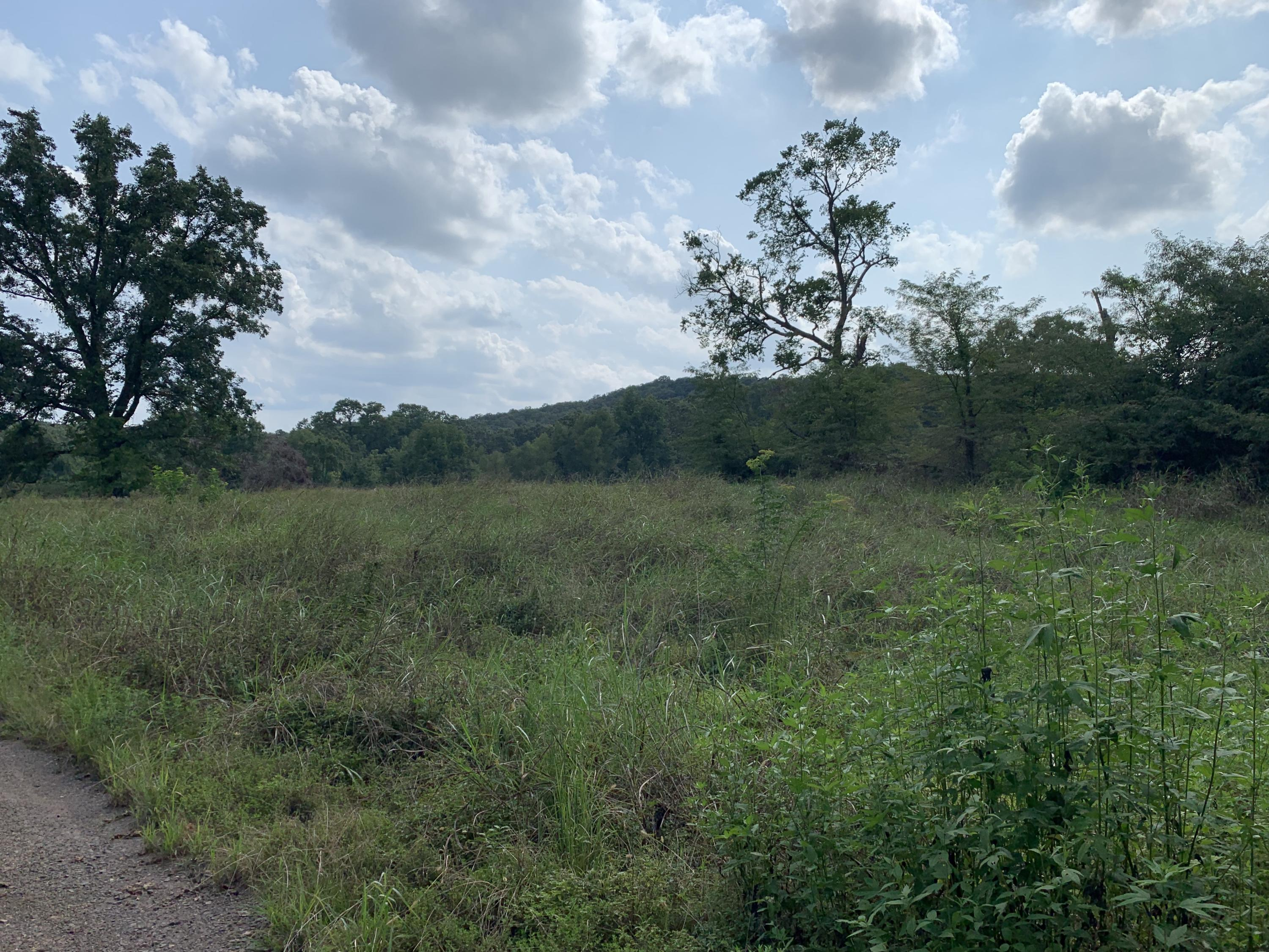 Large photo 1 of sold land at 50 AC M/L Co Rd 2342 , Clarksville, AR
