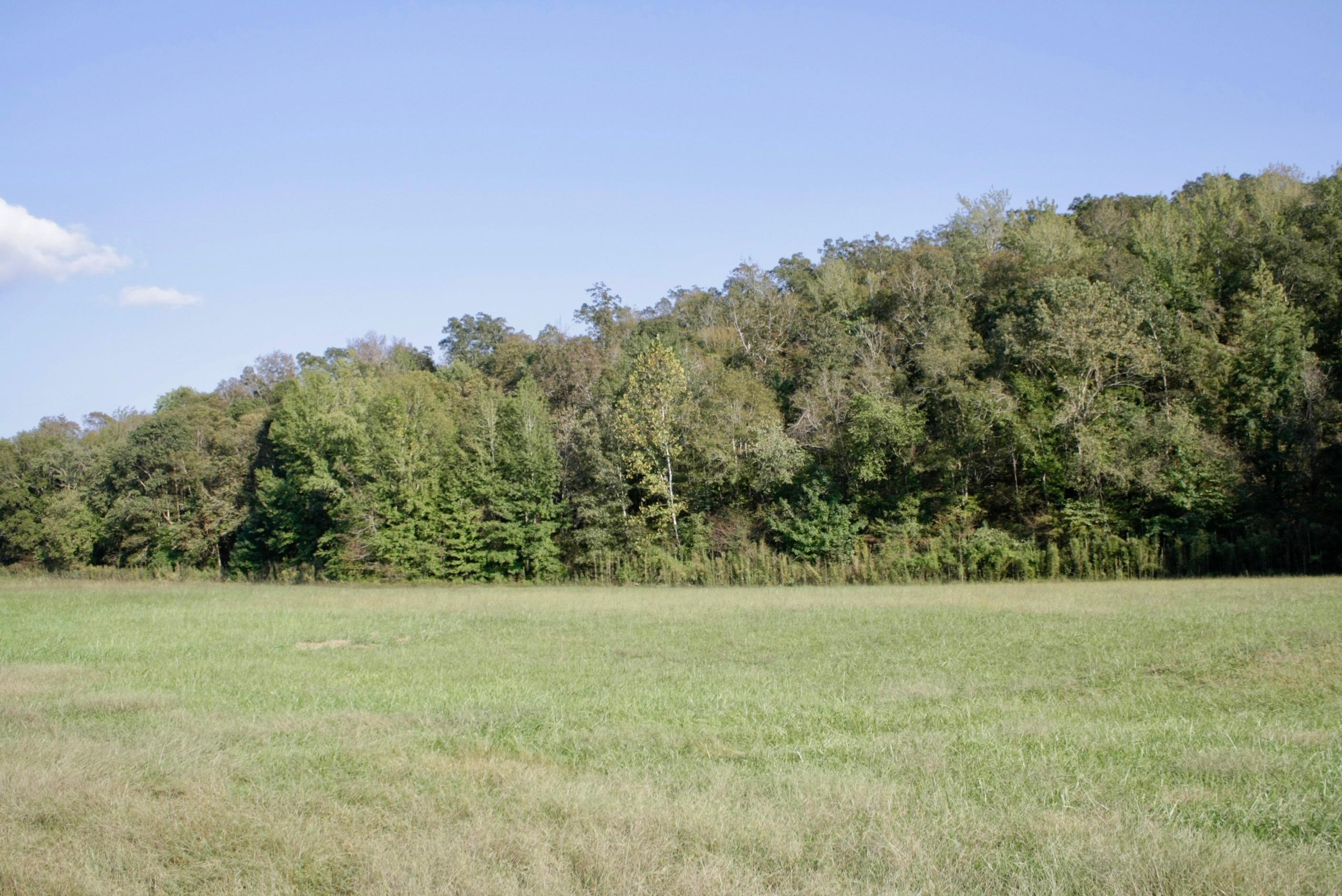 Large photo 4 of sold land at 10 AC m/l Co Rd 6151 , Oark, AR