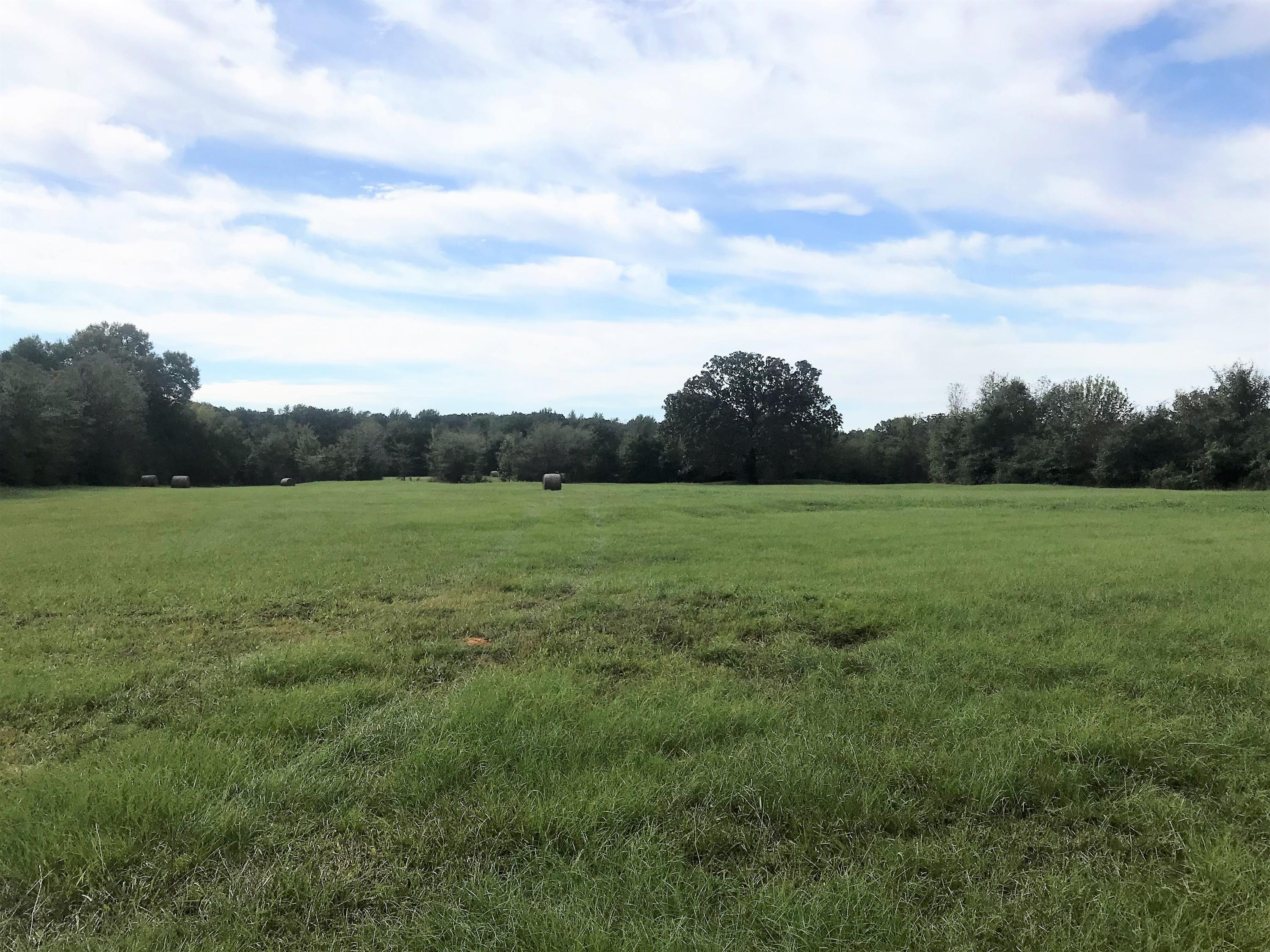Large photo 11 of sold land at 27256 AR-27 , Dardanelle, AR