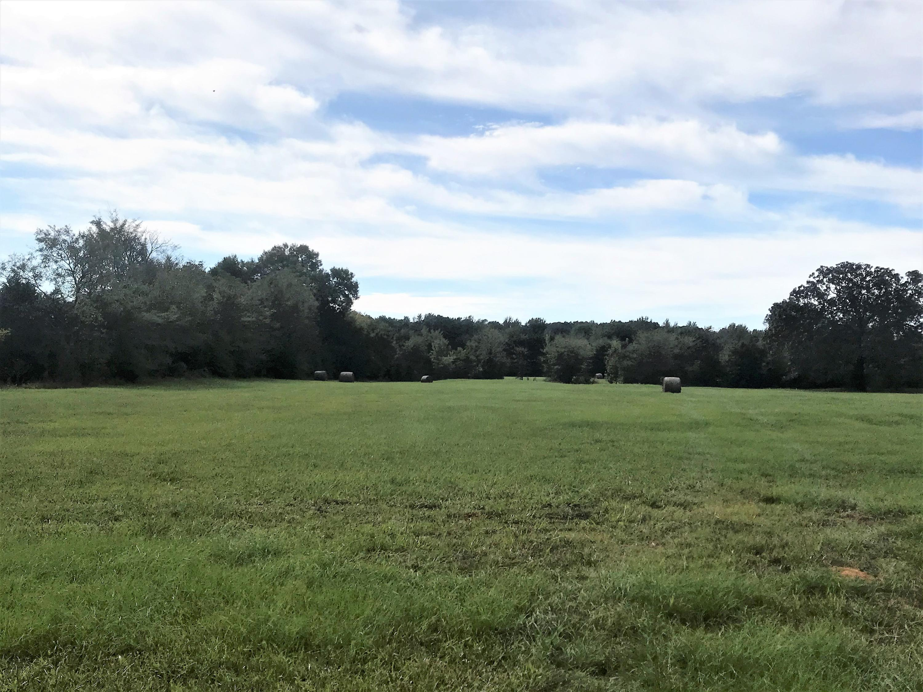 Large photo 15 of sold land at 27256 AR-27 , Dardanelle, AR