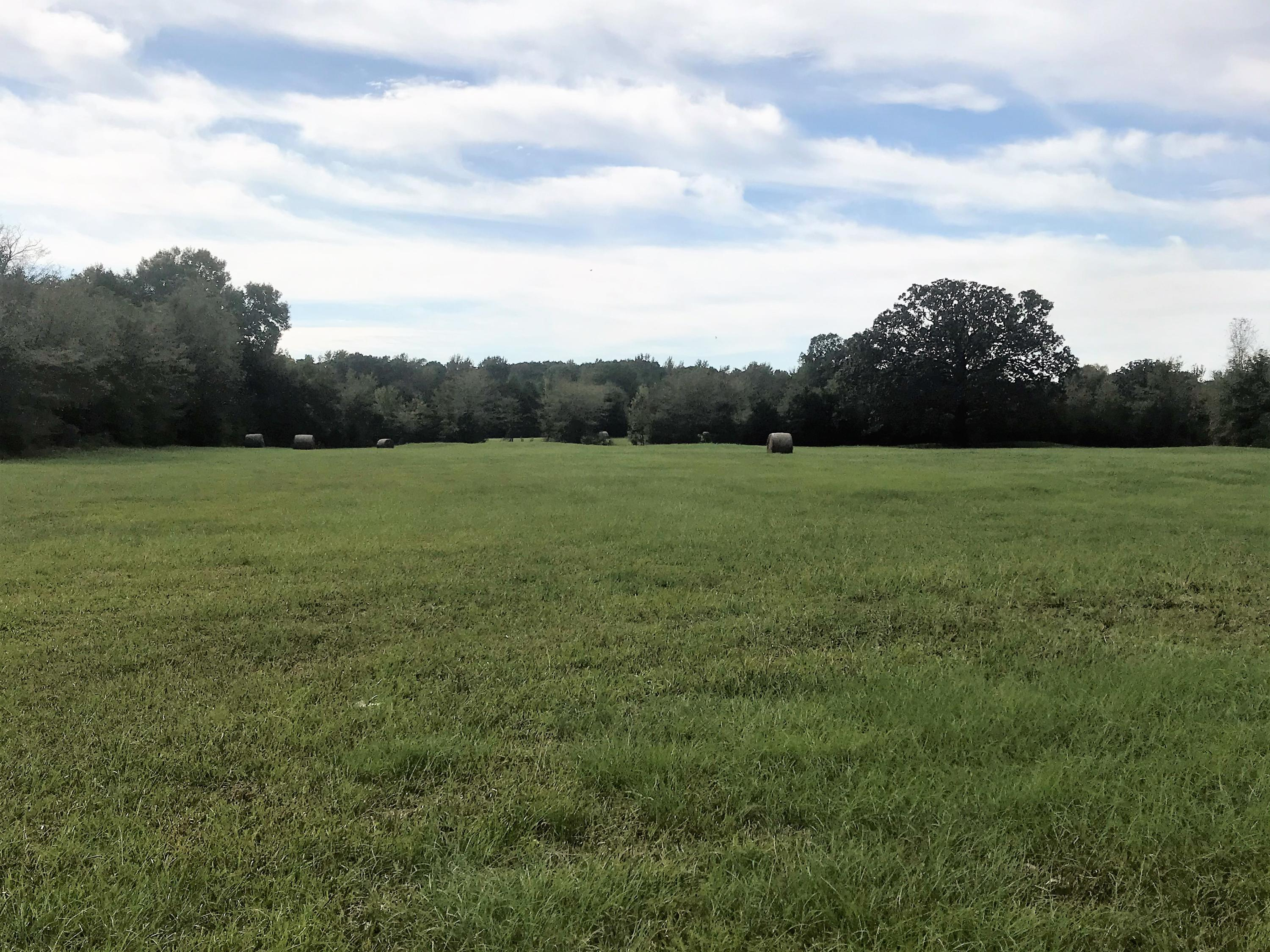Large photo 18 of sold land at 27256 AR-27 , Dardanelle, AR
