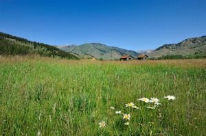 Property for sale at 102 High Meadows Lane, Ketchum,  ID 83340