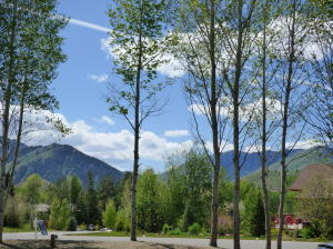 Property for sale at 206 1/2 Big Wells Rd, Sun Valley,  ID 83353