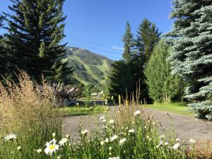 Property for sale at 2512 Warm Springs Rd, Ketchum,  ID 83340
