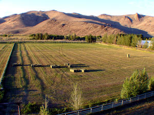 Property for sale at 853 1st St, Picabo,  ID 83348