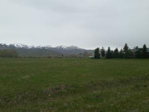Property for sale at 125 Quarter Horse Dr, Bellevue,  ID 83313