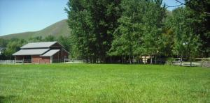 Property for sale at 206 Polo Club Lane, Bellevue,  ID 83313