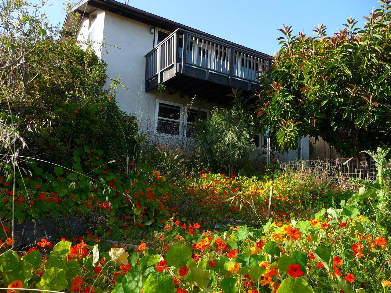 Property photo for 1252 De La Guerra ROAD Santa Barbara, California 93103 - 12-1604