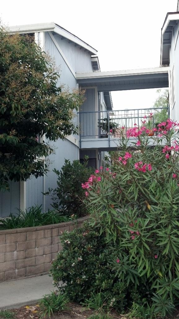 Property photo for 440 Camino Del Remedio #E Santa Barbara, California 93110 - 12-3410