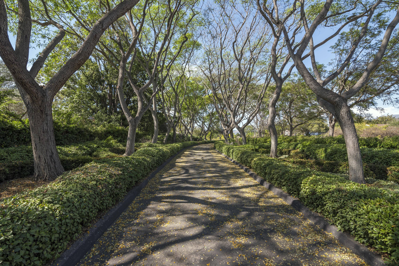 Property photo for 4468 Via Alegre Santa Barbara, California 93110 - 16-3342