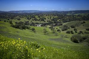 2627 Via De Los Ranchos