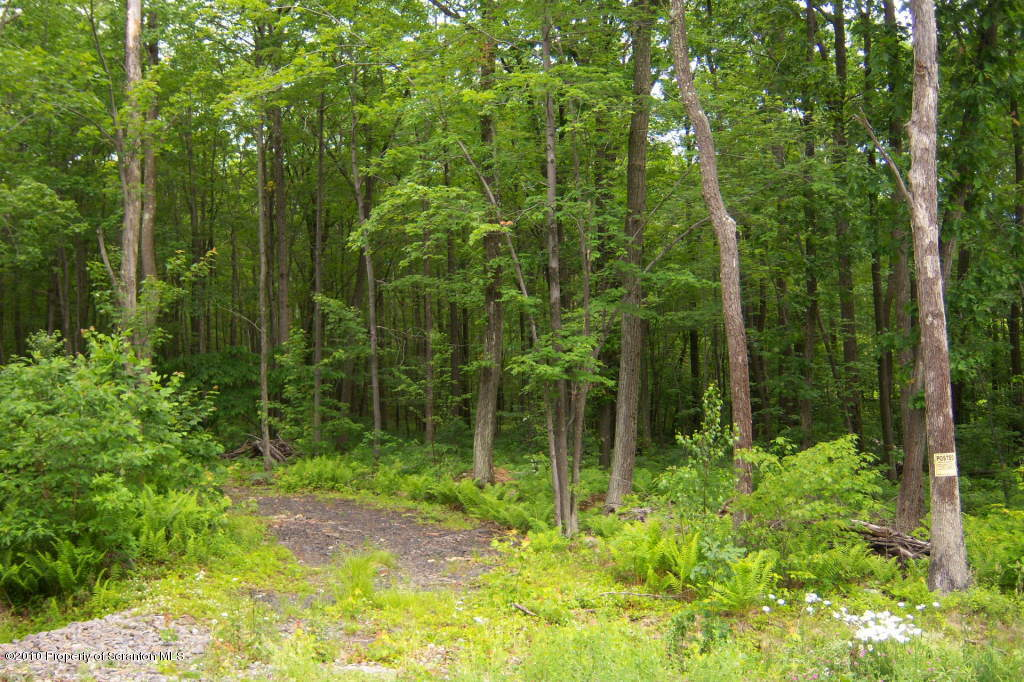 L 74 Windsor Way, Moscow, Pennsylvania 18444, ,Land,For Sale,Windsor,10-3312