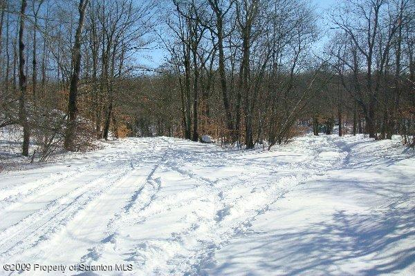 Plank Road East, Gouldsboro, Pennsylvania 18424, ,Land,For Sale,Plank,11-3928