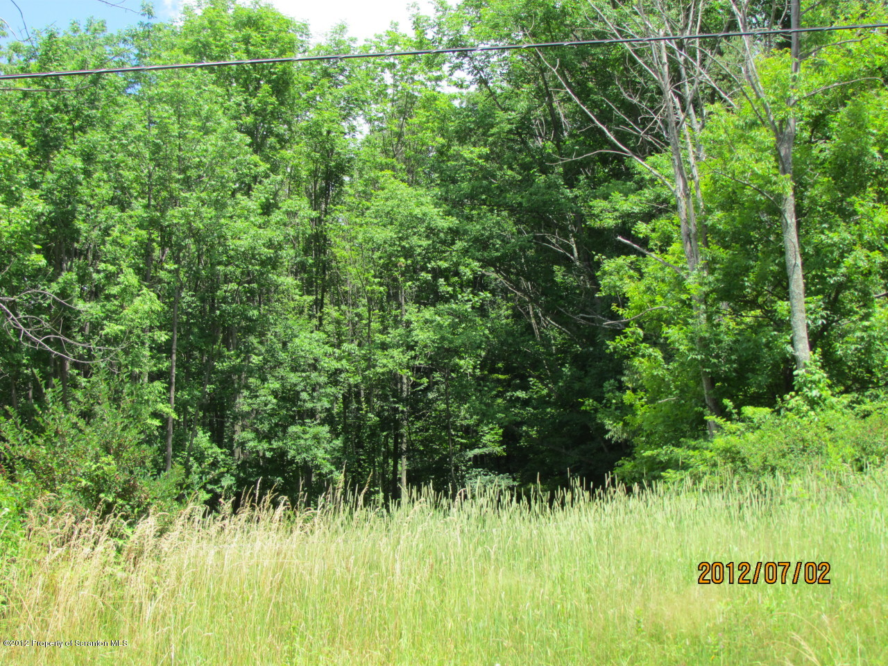 Carbondale Rd, Waverly, Pennsylvania 18471, ,Land,For Sale,Carbondale,12-2984