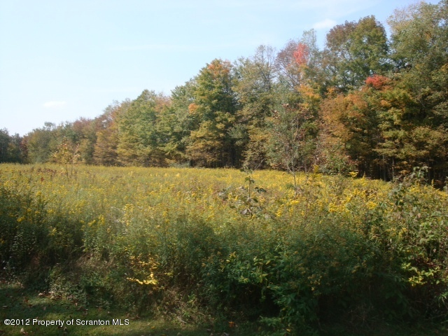 Becks Crossing Rd, Madison Twp, Pennsylvania 18444, ,Land,For Sale,Becks Crossing,12-3166