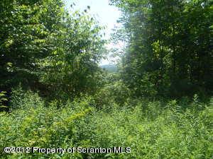 #4 and #5 Saddle Lake Lots, Tunkhannock, Pennsylvania 18657, ,Land,For Sale,Saddle Lake Lots,12-5058