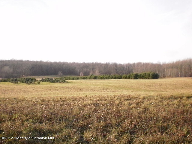 00 Booth Road, Montrose, Pennsylvania 18801, ,Land,For Sale,Booth Road,12-5541