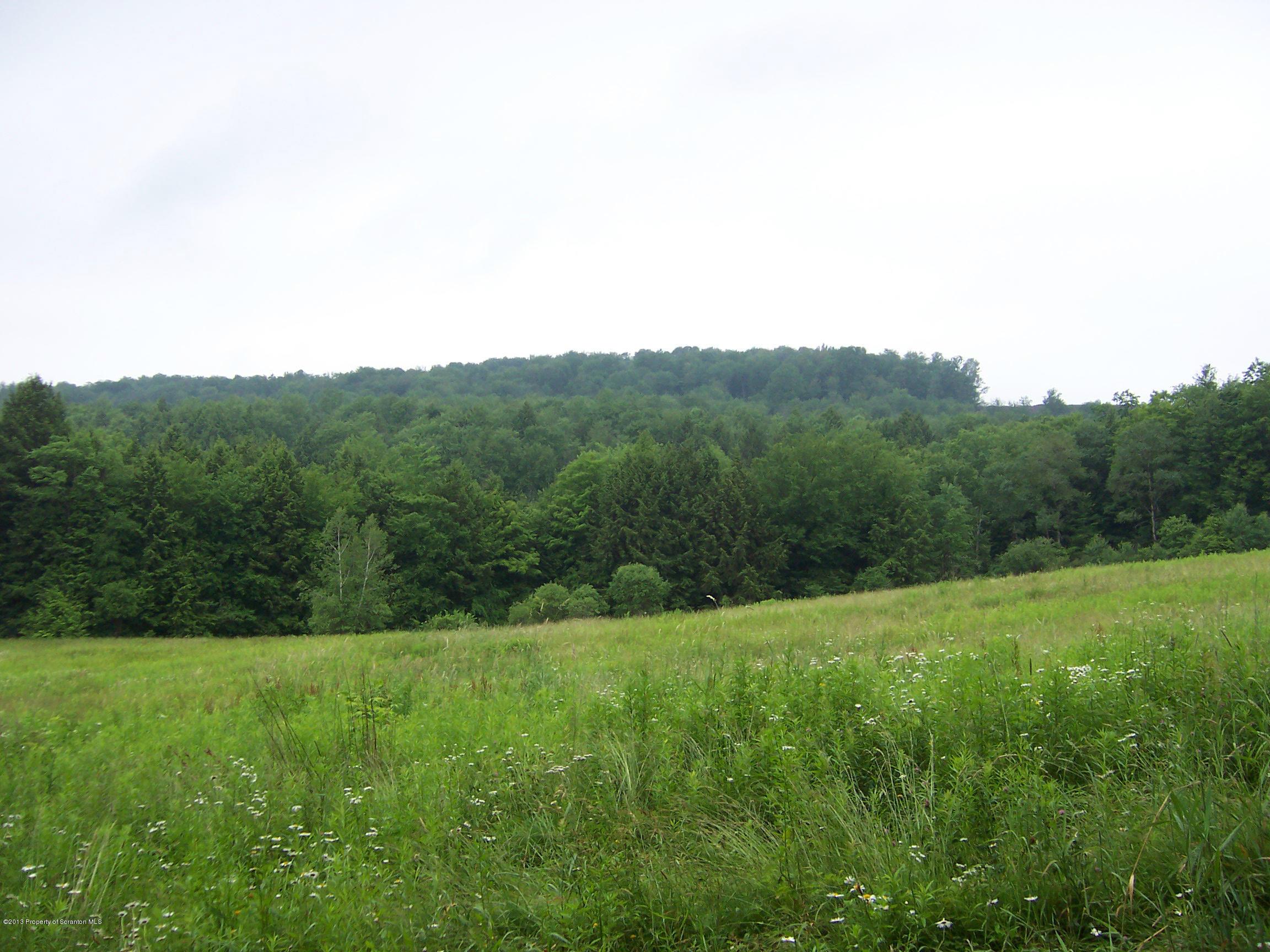 0 PA-2063, Harford, Pennsylvania 18823, ,Land,For Sale,PA-2063,13-3216