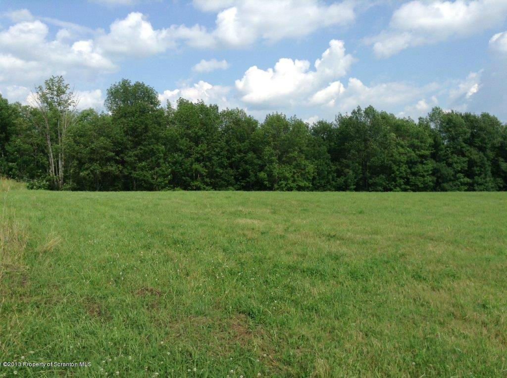 SHERWOOD DR, Pleasant Mount, Pennsylvania 18453, ,Land,For Sale,SHERWOOD,13-3439