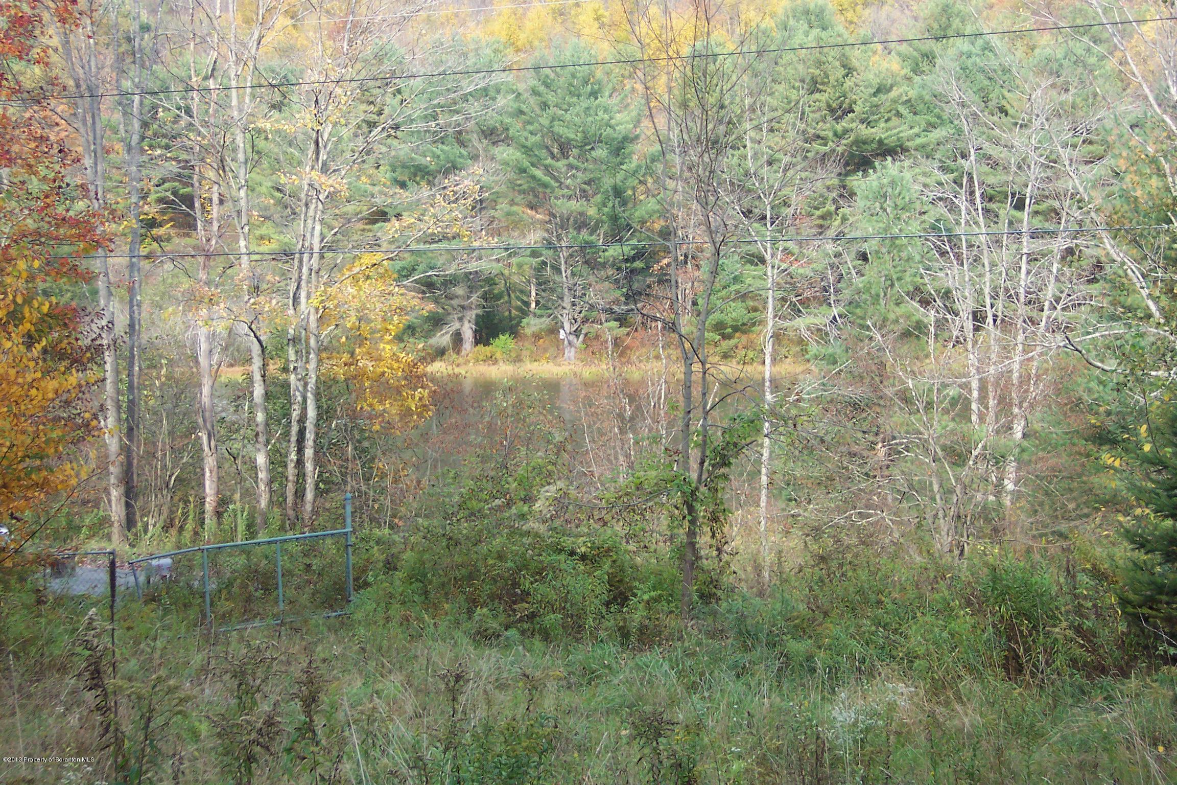 1369 Creek Rd, New Milford, Pennsylvania 18834, ,Land,For Sale,Creek Rd,13-4870