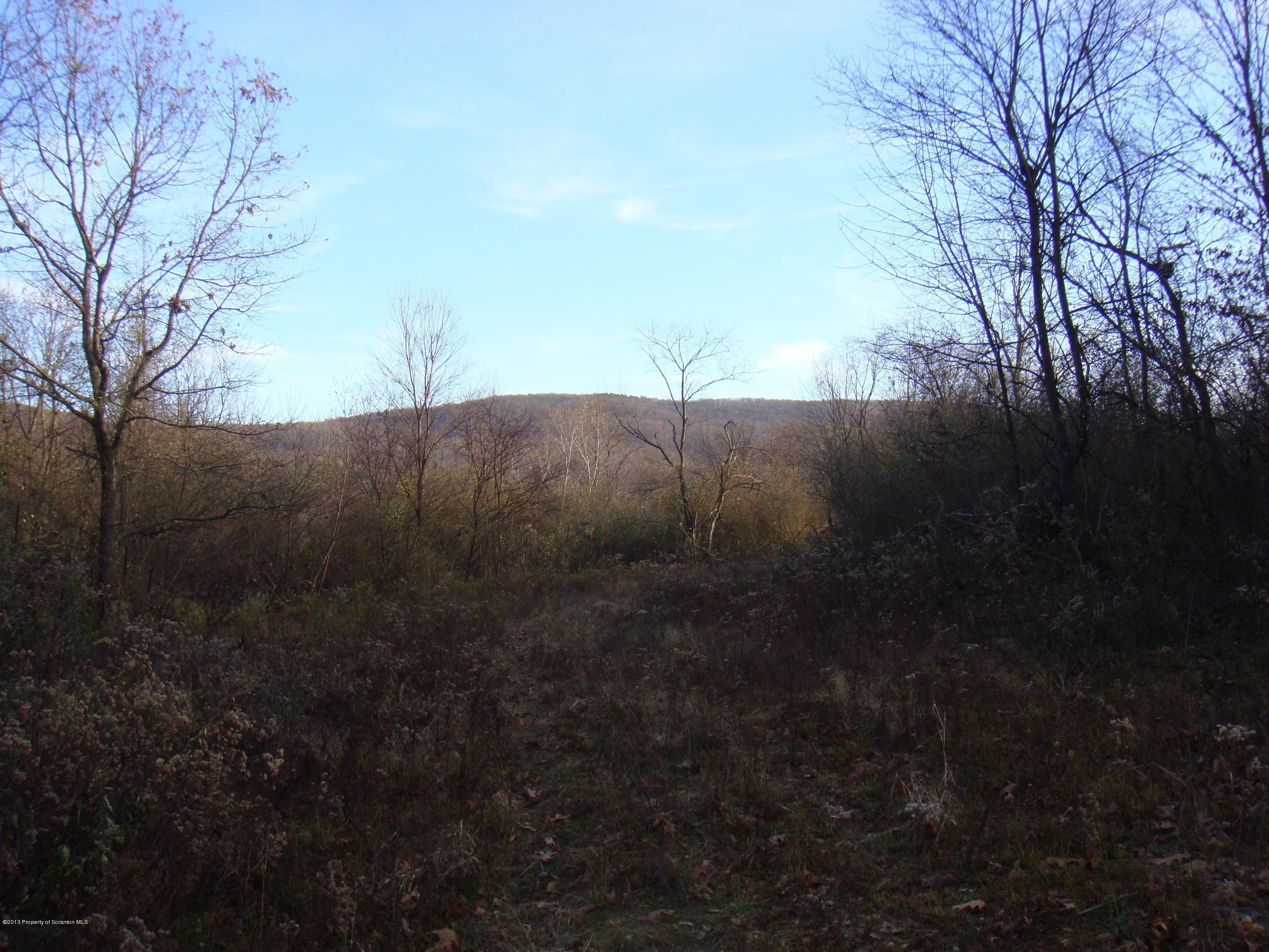 RANSOM Rd, Clarks Summit, Pennsylvania 18411, ,Land,For Sale,RANSOM,13-5644