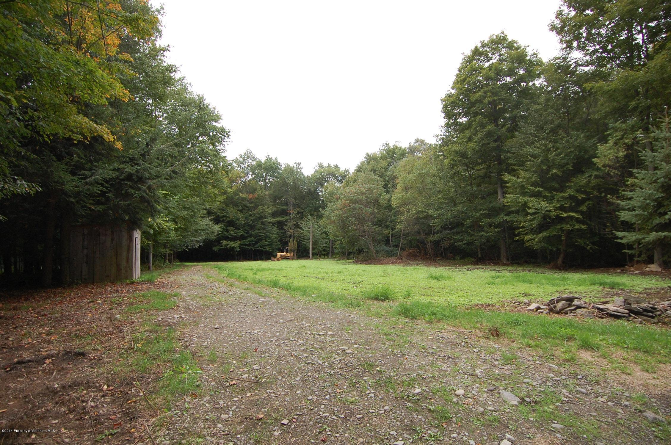 379 Barton Road, Thompson, Pennsylvania 18465, ,Land,For Sale,Barton Road,14-4572