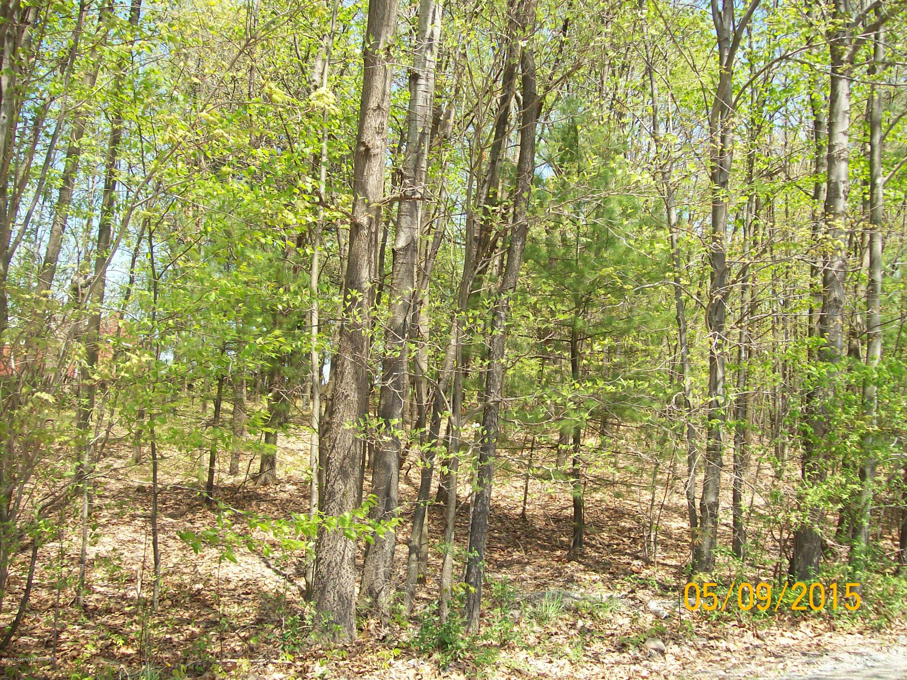 STORY TOWN RD, Tunkhannock, Pennsylvania 18657, ,Land,For Sale,STORY TOWN,15-2083