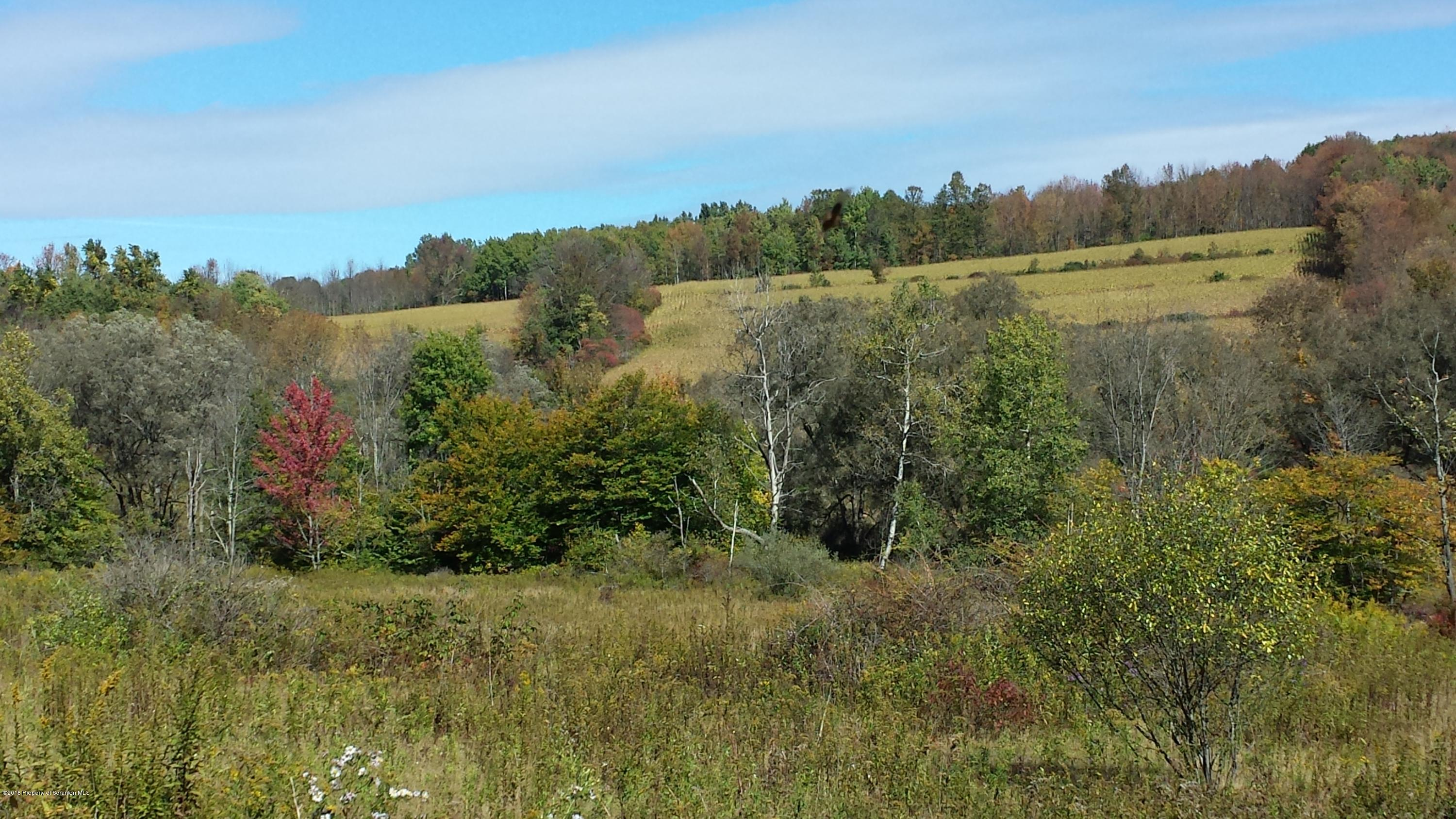 RD Wavery to Potter, Scott Twp, Pennsylvania 18433, ,Land,For Sale,RD Wavery to Potter,15-5002