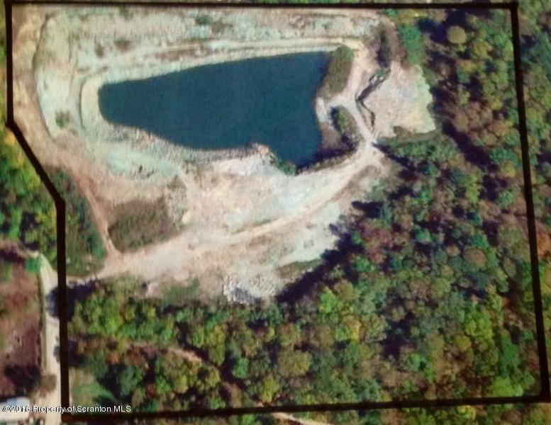 Griffin Pond Rd, Clarks Summit, Pennsylvania 18411, ,Land,For Sale,Griffin Pond,16-4041