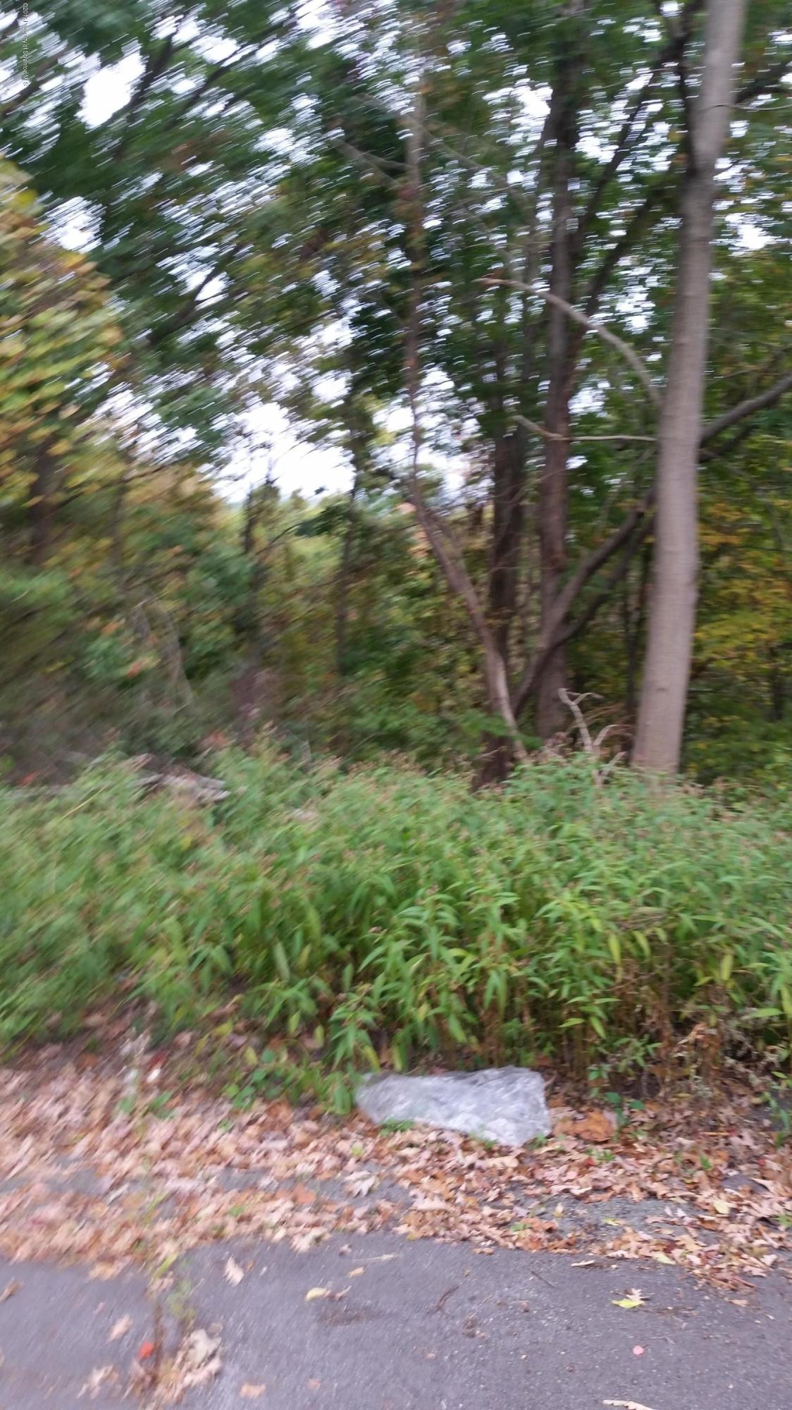 Woodhaven and Carol Dr St, Blakely, Pennsylvania 18452, ,Land,For Sale,Woodhaven and Carol Dr,17-4898