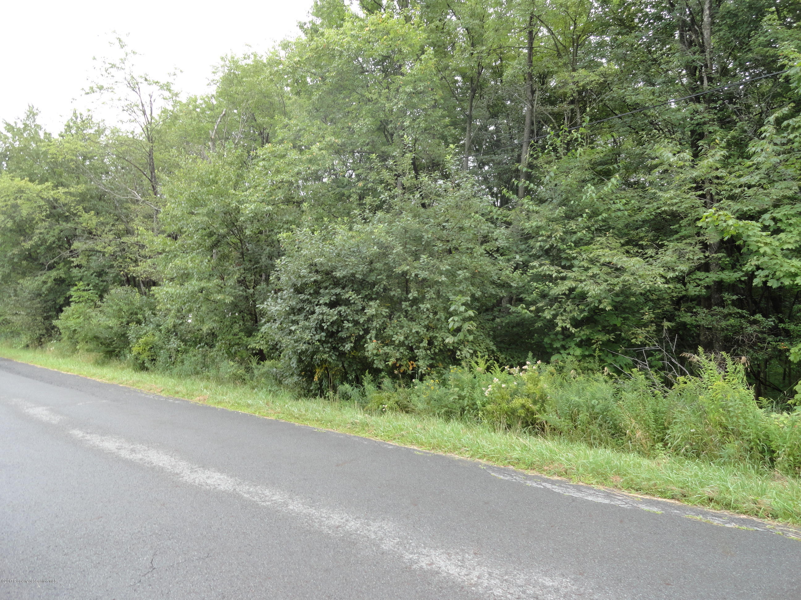 Becks Crossing Rd, Madison Twp, Pennsylvania 18444, ,Land,For Sale,Becks Crossing,17-4953