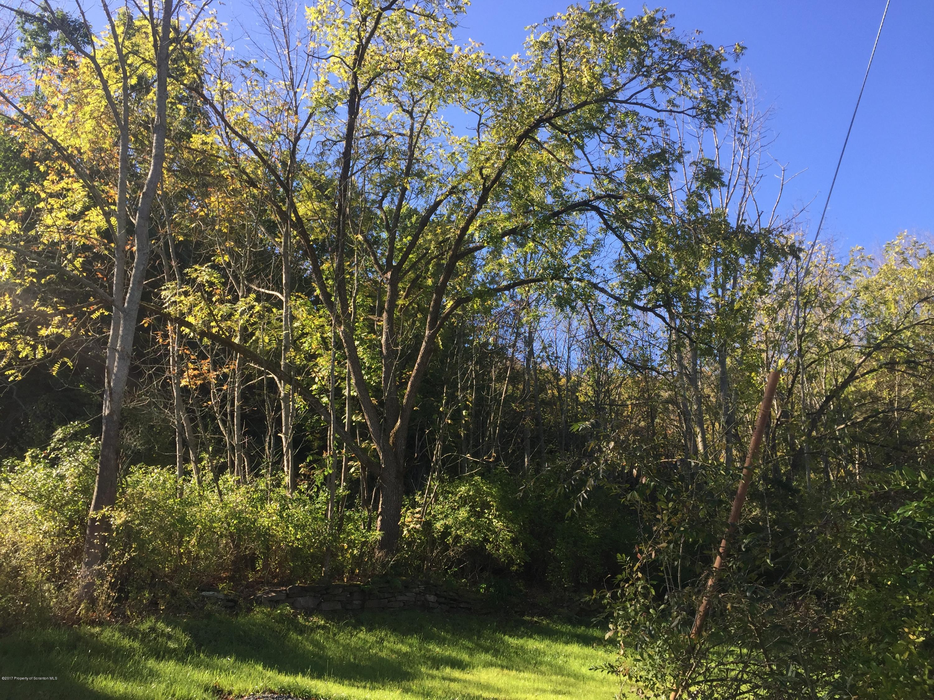 Leach Ave, Chinchilla, Pennsylvania 18410, ,Land,For Sale,Leach,17-5290
