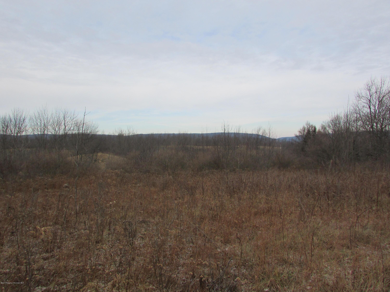 Sayman Road, New Albany, Pennsylvania 18833, ,Land,For Sale,Sayman Road,17-5588