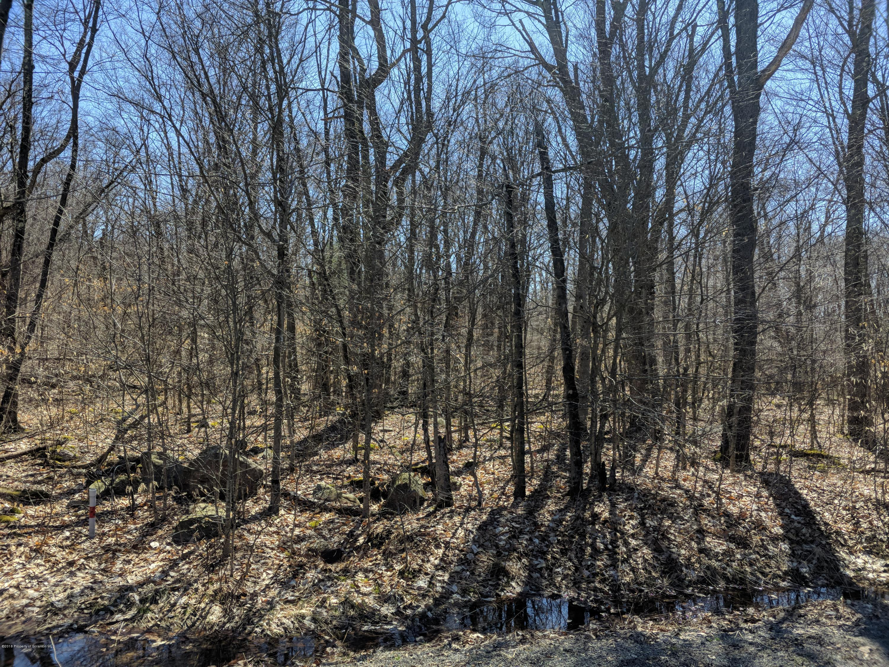 Lot 174 Blue Heron Ct., Gouldsboro, Pennsylvania 18424, ,Land,For Sale,Blue Heron Ct.,18-1885