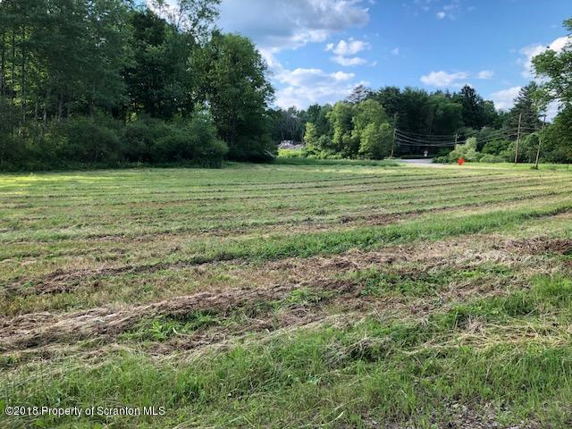L R 35032 Craig Road, North Abington Twp, Pennsylvania 18414, ,Land,For Sale,L R 35032 Craig Road,18-2536
