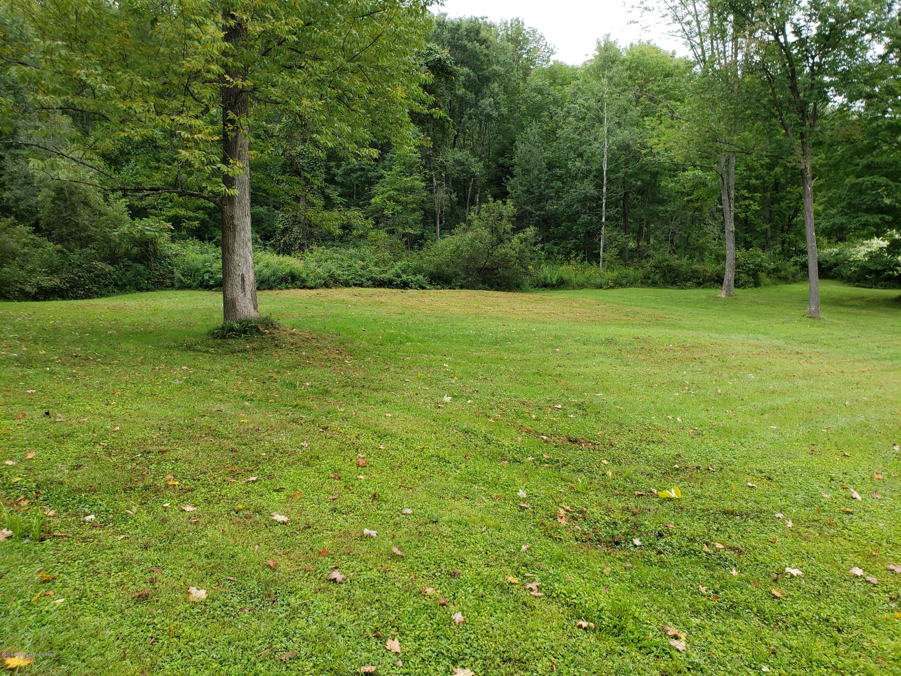 1787 Old Route 11, Hallstead, Pennsylvania 18822, ,Land,For Sale,Old Route 11,19-571