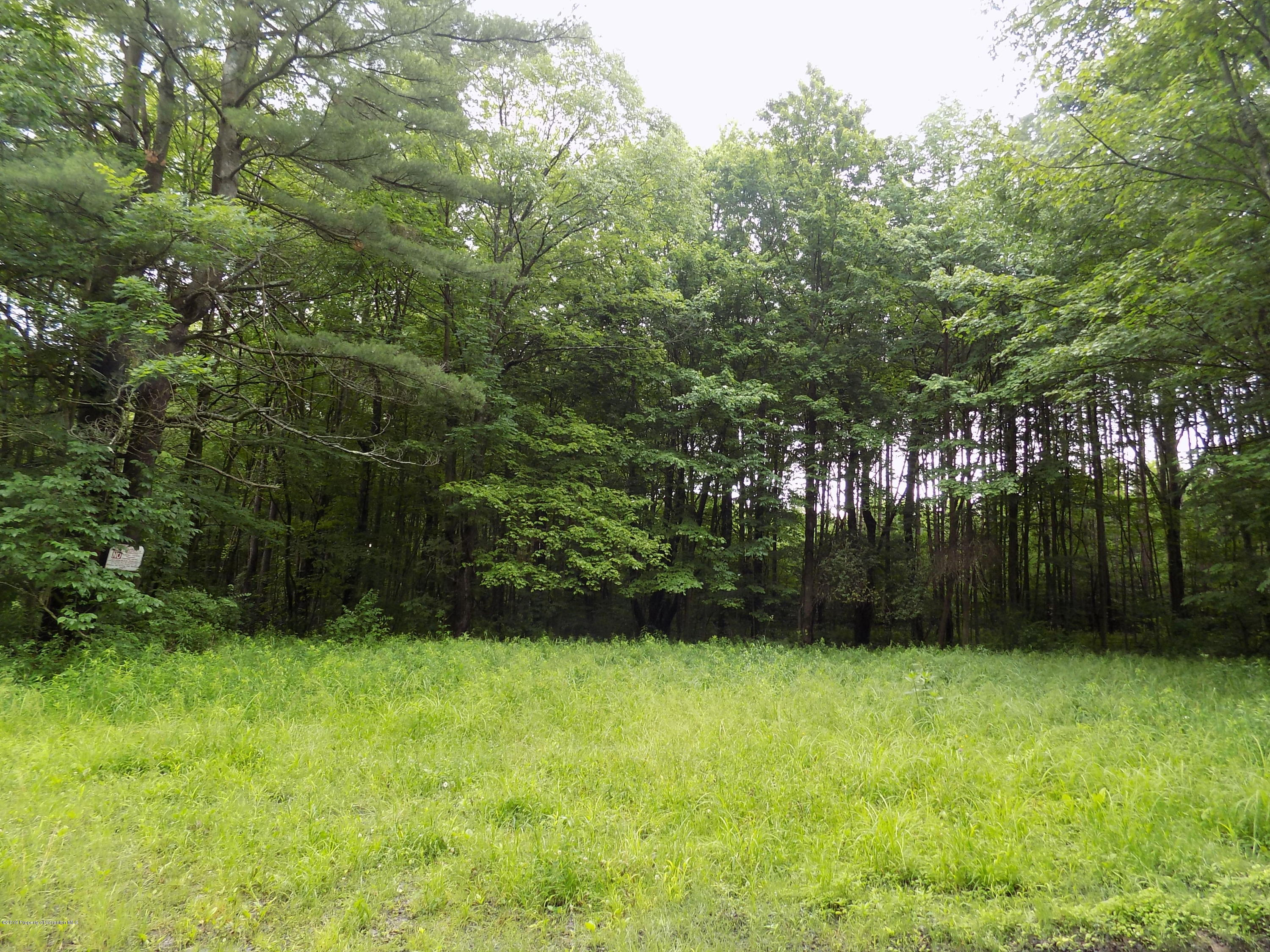 271 Beeman Hill Road, Greene, New York 13778, ,Land,For Sale,Beeman Hill Road,19-2206