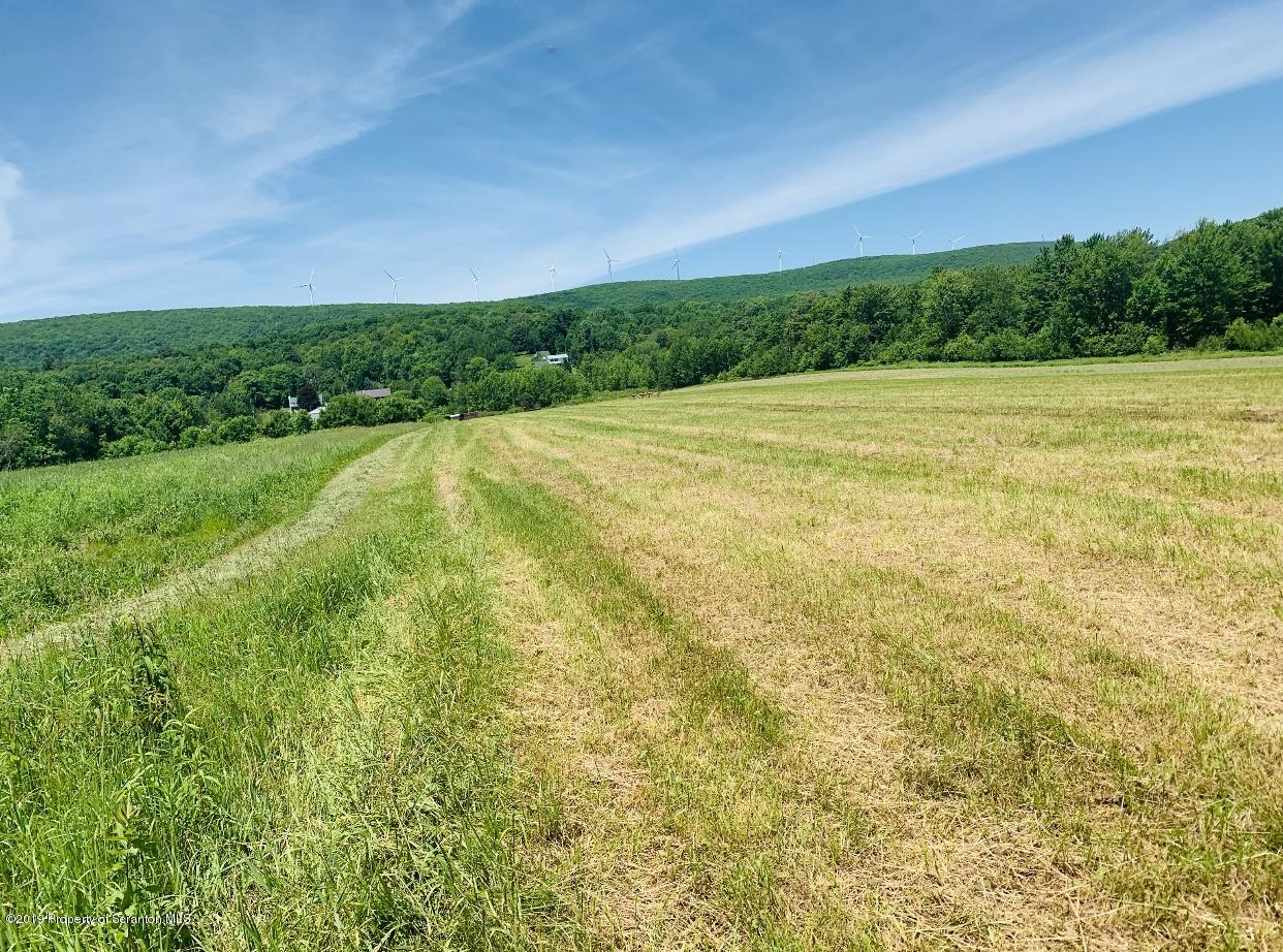 Canaan Rd, South Canaan, Pennsylvania 18459, ,Land,For Sale,Canaan Rd,19-2803