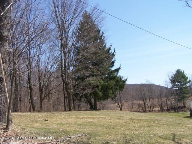 Chapman Lake Rd., Scott Twp, Pennsylvania 18433, ,Land,For Sale,Chapman Lake,19-2913