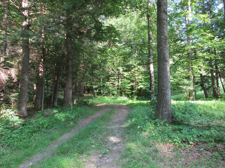 304 Fieldsbrook Rd, Nicholson, Pennsylvania 18446, ,Land,For Sale,Fieldsbrook,19-3205