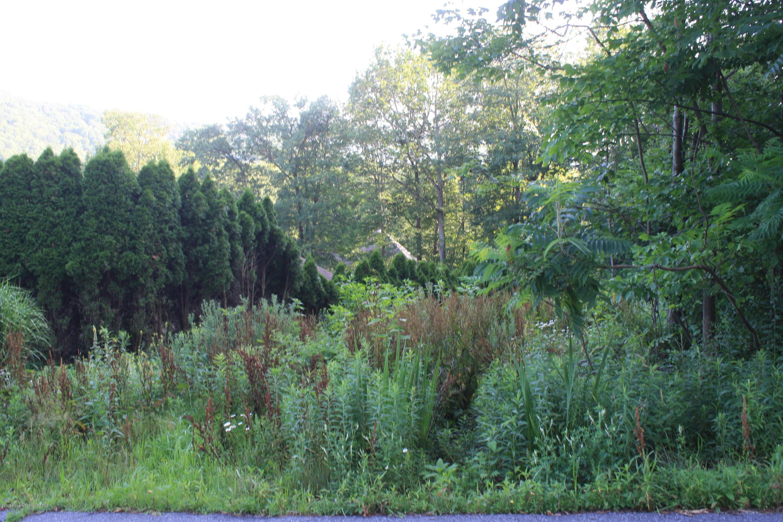 310 Skyline Dr, South Abington Twp, Pennsylvania 18411, ,Land,For Sale,Skyline,19-3281